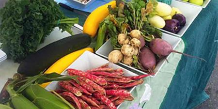 Table with assorted fresh local produce
