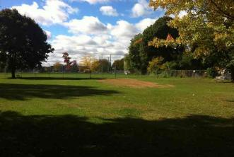 Picture of the King Edawrd Park community garden site