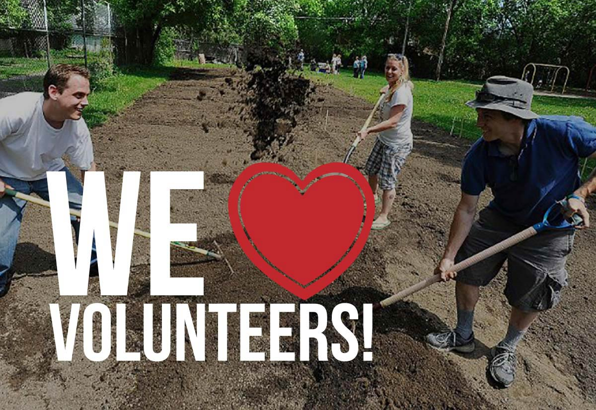 Volunteers preparing new community garden with text: We love volunteers