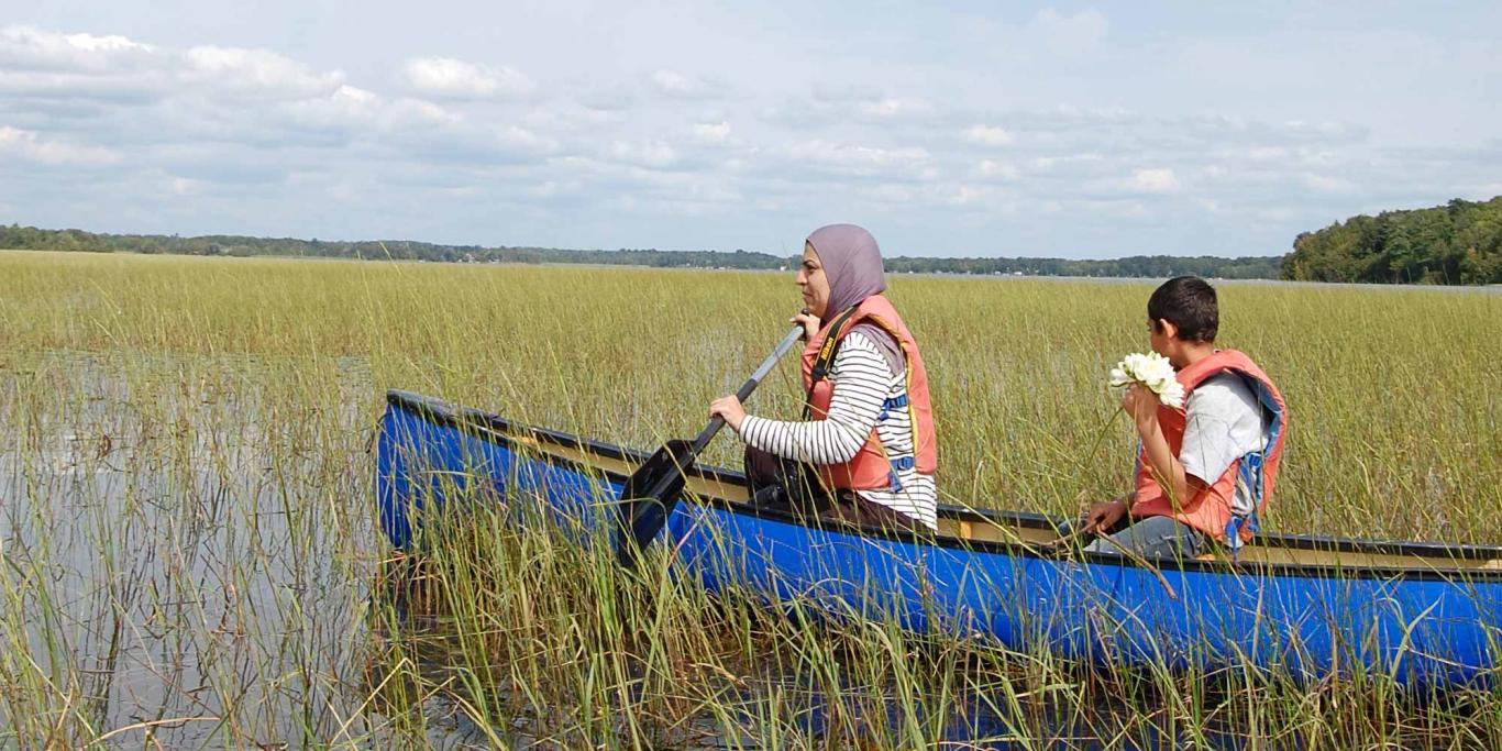 Wild Rice Harvesting Trip